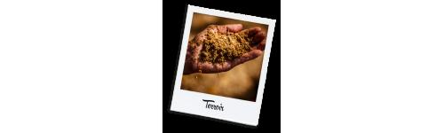 Terroir Grains & Moulu