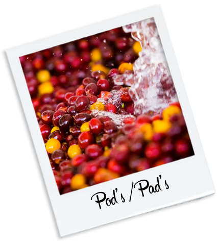 Pod's - pad's